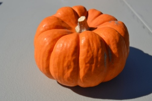 Little Pumpkin at the Easton Oktoberfest